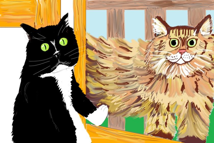 Here Kitty Kitty 4